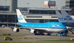 Linia KLM zapewniła w oświadczeniu, że bardzo poważnie podchodzi do kwestii prawidłowego przewożenia zwierząt