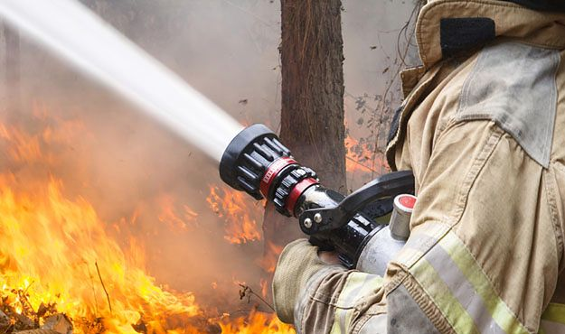 Pożar lasu koło Krosna Odrzańskiego. W akcji samolot gaśniczy i 12 zastępów strażaków