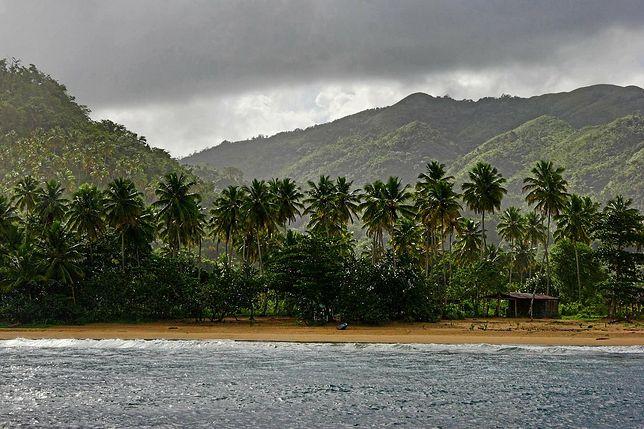 Plaża Dominikany