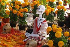 Za darmo: Meksykańskie Święto Zmarłych