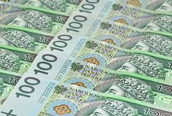 MF: deficyt budżetowy w 2013 r. niższy o ok. 8 mld zł od zakładanego