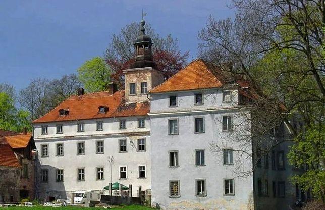 Pałac w Dziwiszowie (fot. otodom.pl)