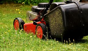 Dopasuj kosiarkę do swojego trawnika. Grunt to rozsądny zakup