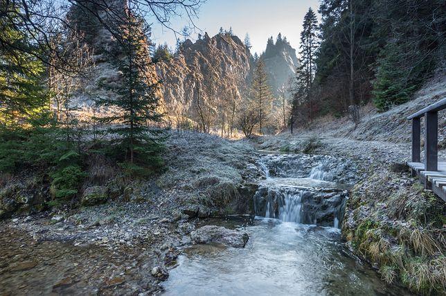 Wąwóz Homole to jedno z najpiękniejszych miejsc w Polsce