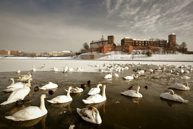 Co warto zrobić w Krakowie zimą?