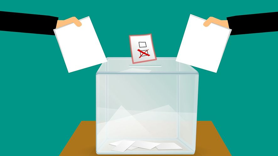 Prawybory USA: awaria aplikacji do głosowania (fot. Pixabay)