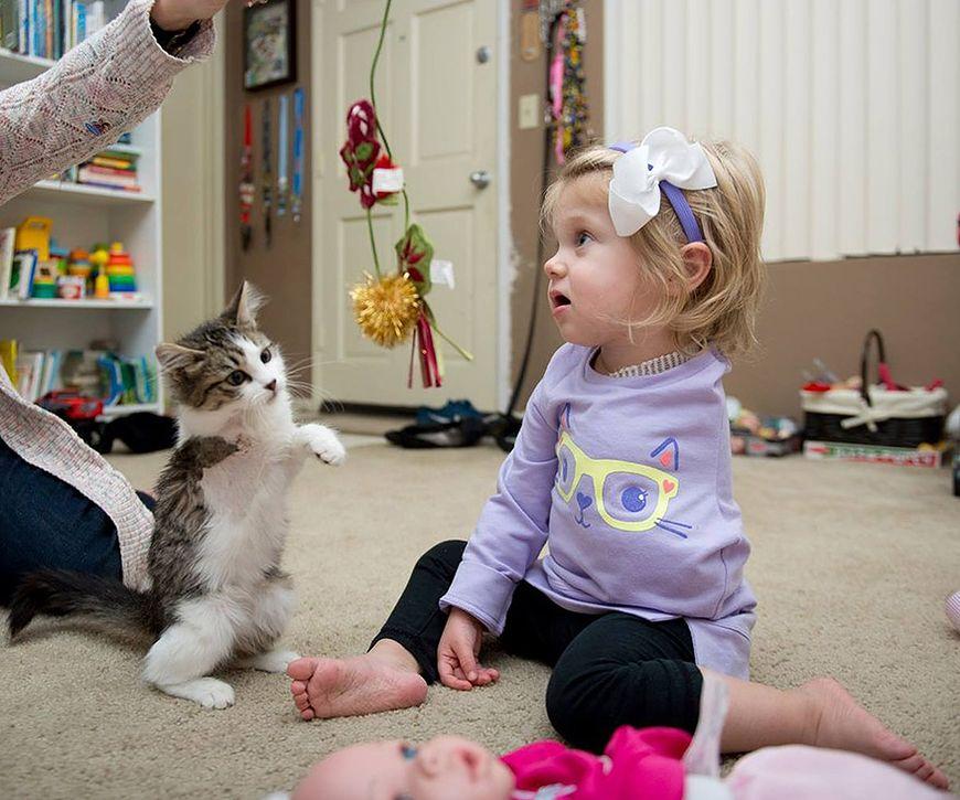 Scarlette i jej kotek razem się bawią