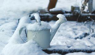 Zimą łatwo przeoczyć przykryty śniegiem zwycięski projekt budżetu partycypacyjnego