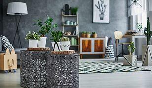 Nowoczesne dekoracje do domu sprawiają, że we wnętrzach powstają niepowtarzalne aranżacje