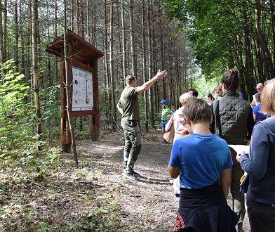 Warszawa. Tajemnice lasu. Leśnicy zapraszają na spacery
