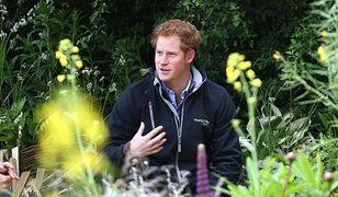 Książę Harry szczęśliwy jako singiel