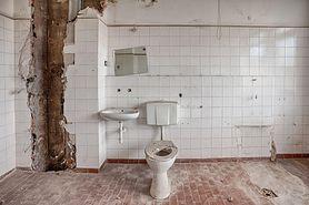 Lekarz twierdzi, że ręce trzeba myć też przed skorzystaniem z toalety. Sprawdź, gdzie kryje się najwięcej bakterii