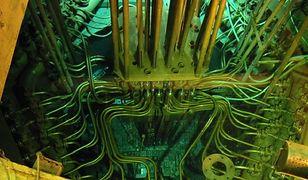 """Jesteśmy o krok od zbudowania kolejnego reaktora w Polsce. """"Odporność na wszelkiego rodzaju awarie"""""""