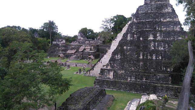 Tikal przeżywał okres prosperity w VII-VIII w. W IX w. miasto opustoszało. Powód? Teorii jest wiele: epidemie, przeludnienie, klęski głodu, susza, a potem konkwistadorzy, którzy dopełnili dzieła zniszczenia
