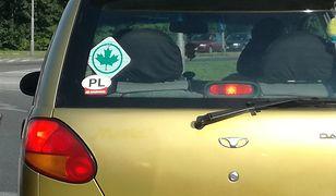 Młodzi kierowcy mieliby oznaczyć samochód zielonym listkiem i jeździć wolniej