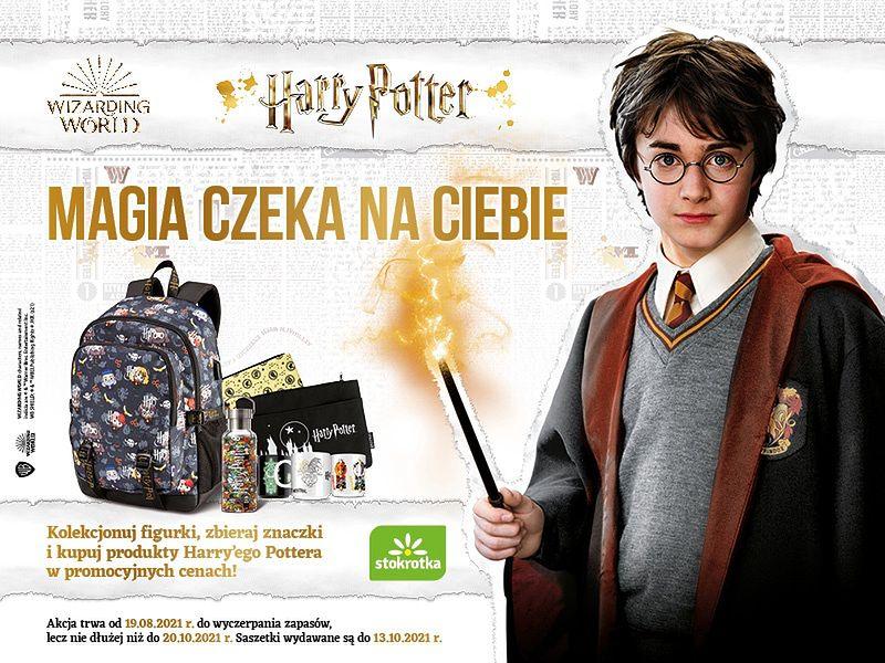 W Stokrotce na klientów czeka Harry Potter