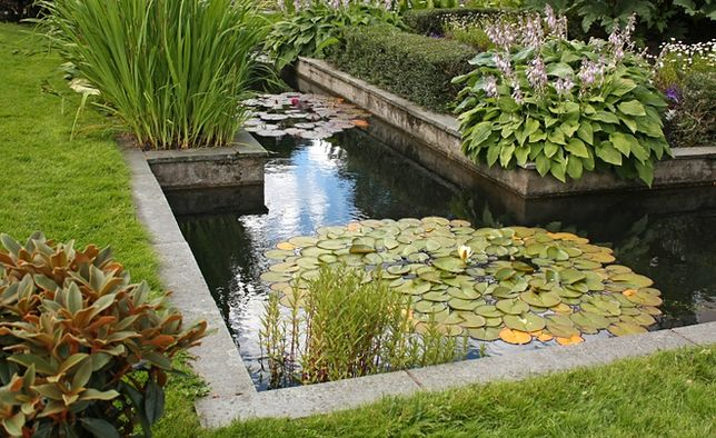 Woda w ogrodzie: oczko, staw, kaskada, a może fontanna?