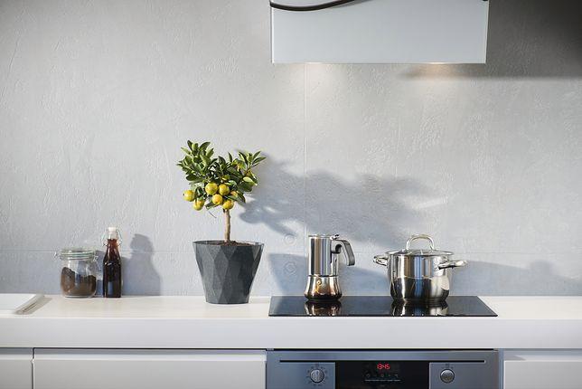 5 sprzętów AGD, które musisz mieć w kuchni. Wybór redakcji WP Dom
