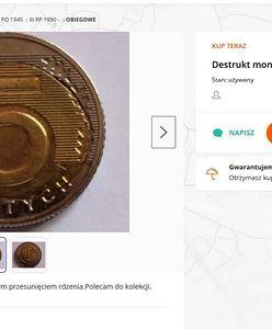 """Pięciozłotówka może być warta 1000 zł. """"Warto przejrzeć portfel"""""""