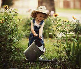 Twoje dziecko lubi ogród? Sprawdź, jakie zabawki z pewnością mu się spodobają