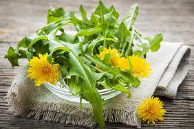 Cenne rośliny, które warto zbierać wiosną