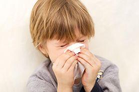 Bakterie groźne dla dzieci - pneumokoki, paciorkowce, meningokoki, salomenlla, HiB