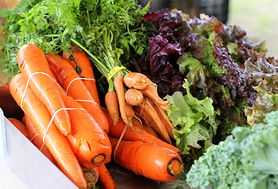 Odchudzanie dla każdego - czy istnieje uniwersalna dieta dla wszystkich?