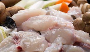 Ryba fugu. Zabójczy przysmak