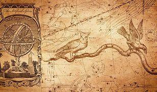 Horoskop dzienny na wtorek. To będzie dobry dzień dla znaków zodiaku