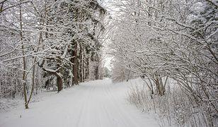 Pierwszy dzień zimy w 2019 roku jest dużo mniej biały niż początki tej pory sprzed kilku lat.
