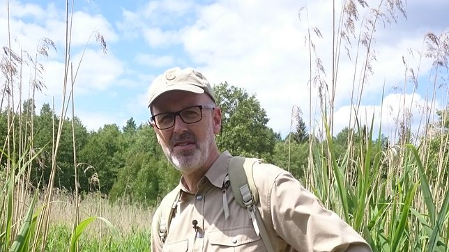"Peter Wohlleben - autor książki ""Sekretne życie drzew"""
