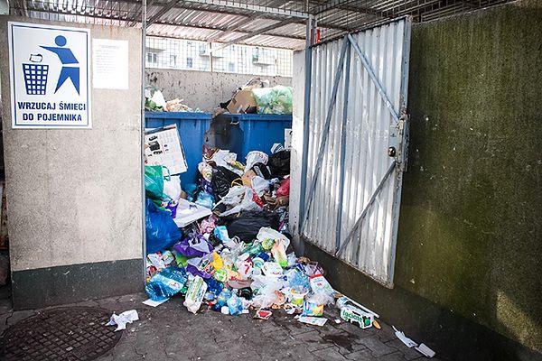 Mandaty za przeszukiwanie śmietników. Wysokie kary w Hiszpanii