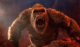 Godzilla vs. Kong – recenzja Blu-ray od Galapagos