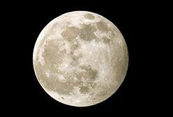 """Pełnia księżyca na waszych zdjęciach. """"Wilczy Księżyc"""" skradł nasze serca"""