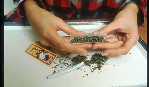 Palenie marihuany nie wpływa na efektywność pracy – nowe badanie