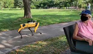 Koronawirus. Pies-robot patroluje parki. Przypomni o zachowaniu odpowiedniego dystansu [Wideo]