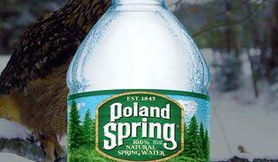 """Afera wokół Poland Spring w Stanach Zjednoczonych. """"To jedno wielkie oszustwo"""""""