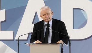 Kaczyński jednoznacznie o polexicie. Odbija piłeczkę