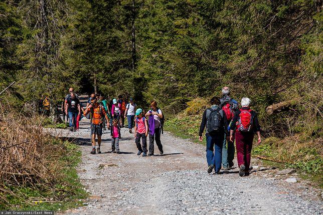 Polacy szukają pomysłów na wakacje w Polsce
