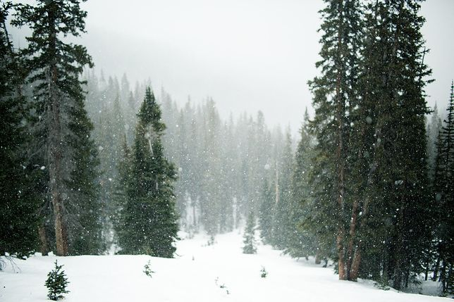 Prognoza pogody zima 2021