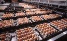 Polscy producenci jaj zaniepokojeni. Rośnie im niespodziewana konkurencja