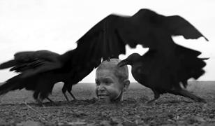 """""""Malowany ptak"""": polska premiera. Nie wszyscy wytrzymali do końca"""