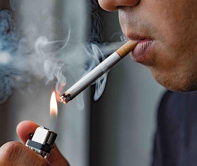 Przełomowe odkrycie naukowców. Płuca regenerują się nawet po 40 latach palenia papierosów