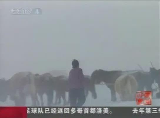 Mongolia również sparaliżowana atakiem zimy - video