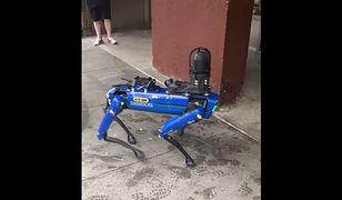 """Policyjny pies robot """"terroryzuje"""" Nowy Jork. Burmistrz staje po stronie mieszkańców"""