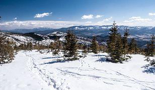 Zima w Polsce może zachwycić niejedną osobę. I wcale nie trzeba jechać do Zakopanego, aby poczuć magię tej pory roku.
