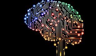Wszczepiony do mózgu implant daje nowy zmysł