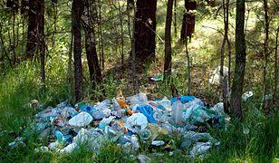 Na śmieciarzy czekają surowe kary