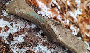 Nadleśnictwo Kędzierzyn. Znaleziono skarb sprzed 3 tys. lat