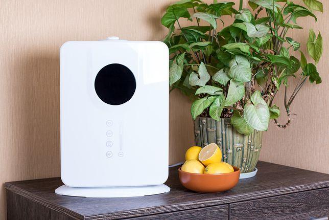 Suche i gorące powietrze szkodzi zdrowiu, a także roślinom w twoim domu